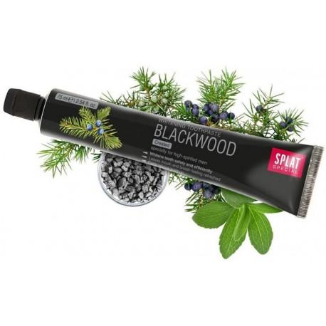 SPLAT BLACKWOOD fluoridfreie Aktivkohle Zahnpasta