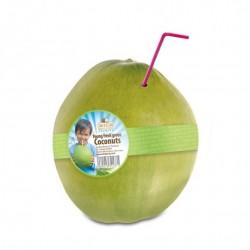 Dr Goerg junge grüne frische Bio-Trinkkokosnüsse